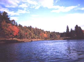 A great fishing hole on the nearby Cains River