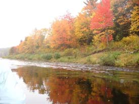 Beautiful fall colours along the river